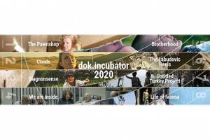CEE Projects Selected for dok.incubator 2020
